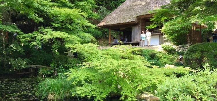 【6/1~6/7】facebookで振り返る、先週の安芸太田町はこんな感じでした。