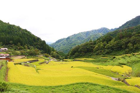 【9/7~9/13】facebookで振り返る、先週の安芸太田町はこんな感じでした。