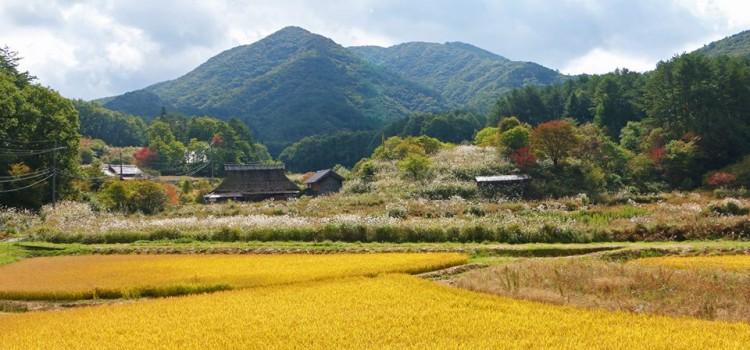 【10/5~10/11】facebookで振り返る、先週の安芸太田町はこんな感じでした。