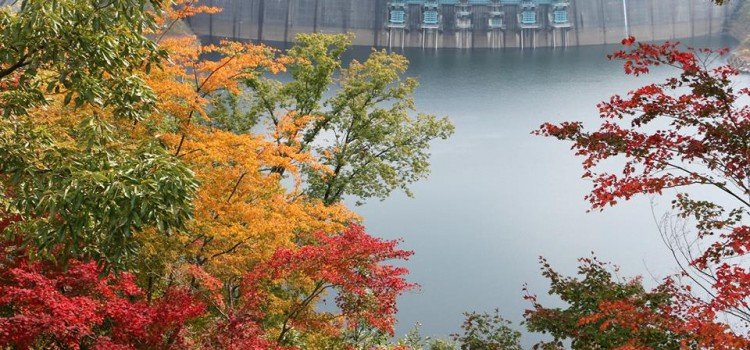 【10/26~11/1】facebookで振り返る、先週の安芸太田町はこんな感じでした。