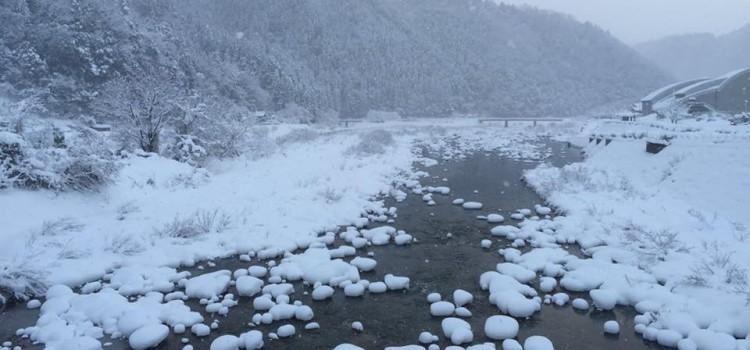 【1/25~1/31】facebookで振り返る、先週の安芸太田町はこんな感じでした。